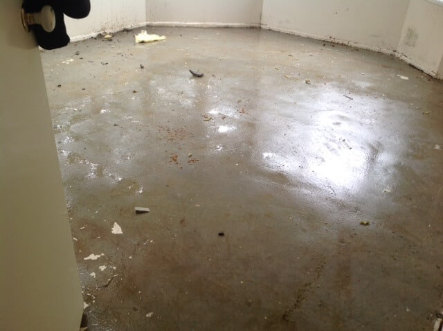 Floor Damage restoration