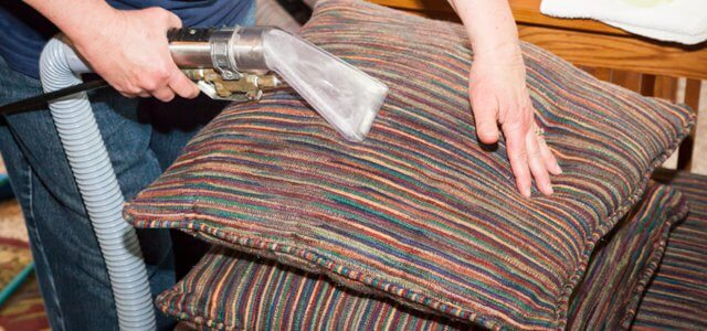 Upholstery Cleaning a sofa from pet odours and stains