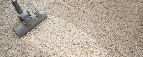 Carpet Cleaning Ipswich Services