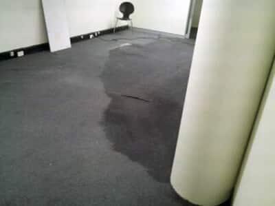 Water Damage Sheldon